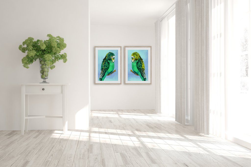 Green_Budgies_1_and_2_in_room_1024x1024